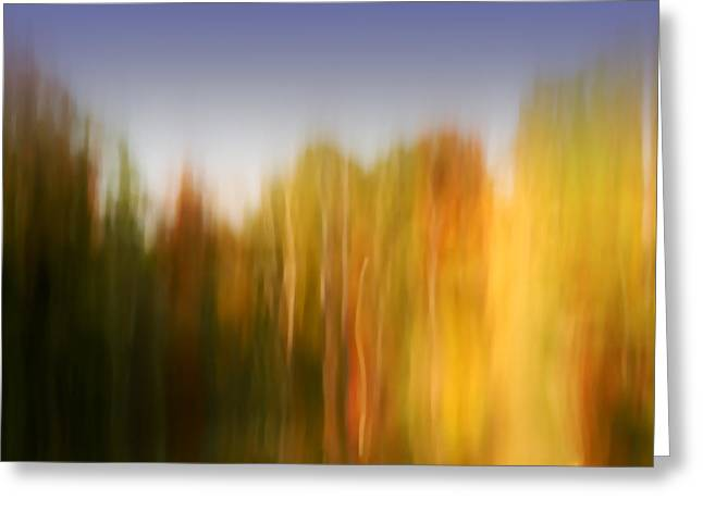 Abstract Flower Greeting Cards - Last November at Duke Greeting Card by Margaret Denny