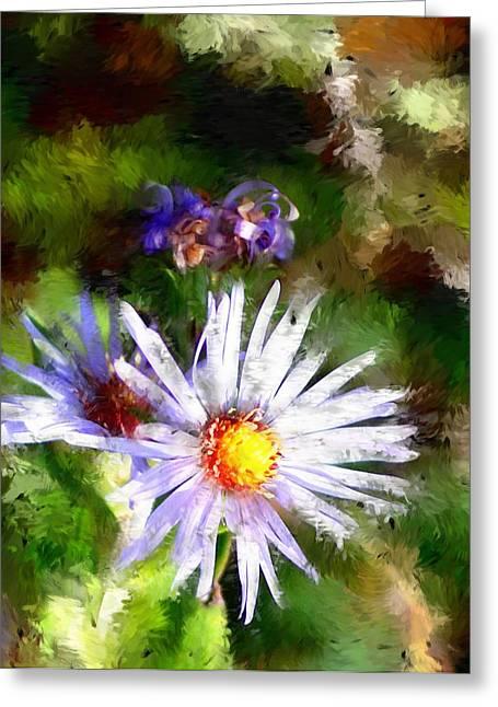 Last Rose Of Summer Greeting Card by David Lane