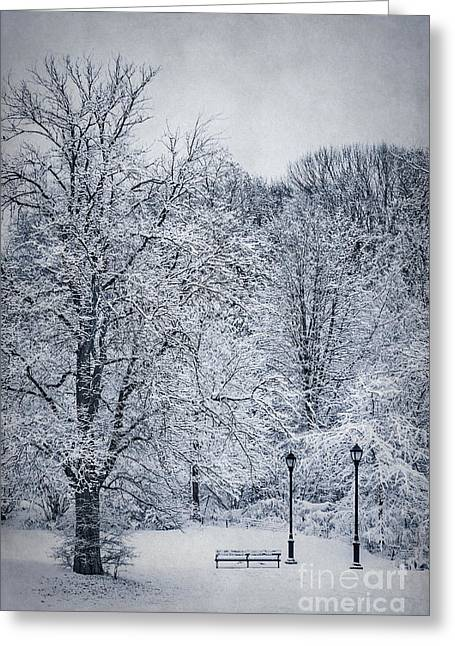 Prospects Greeting Cards - Last Winters Dream Greeting Card by Evelina Kremsdorf