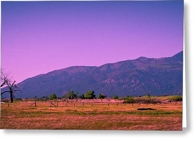 Late Afternoon In Taos Greeting Card by David Patterson