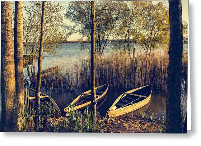 Reflections In River Greeting Cards - Late Afternoon On The Lake I Greeting Card by Marco Oliveira