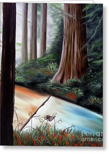 Redwood Tree Greeting Cards - Late Autumn at Sanborn Skyline  Greeting Card by Laura Iverson