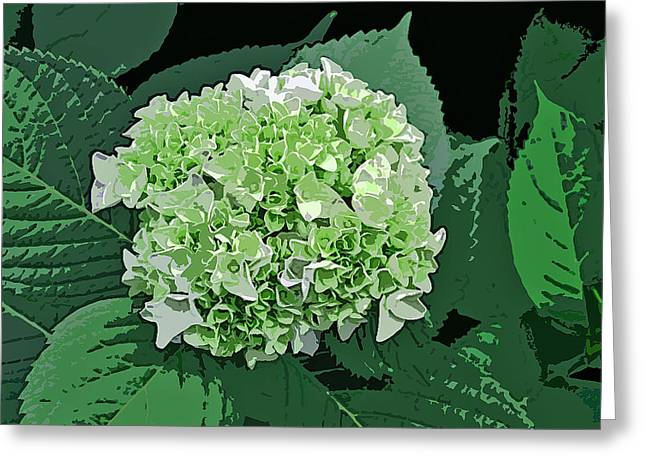 Green Abstract Greeting Cards - Late Bloomer Greeting Card by Jean Hall