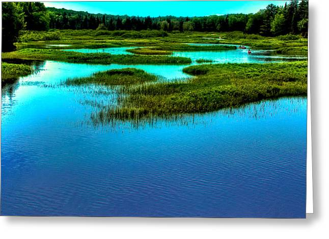 The North Greeting Cards - Late May on the Moose River Greeting Card by David Patterson