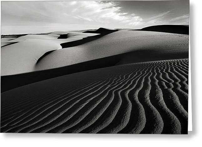 Oceano Greeting Cards - Late Shadows Greeting Card by Sherrie Chavez