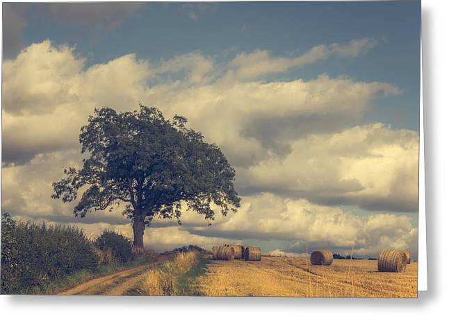 Bale Greeting Cards - Late summer Greeting Card by Chris Fletcher