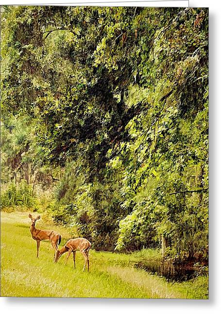 Wildlife Refuge. Greeting Cards - Late Summer Deer Greeting Card by Jan Amiss Photography