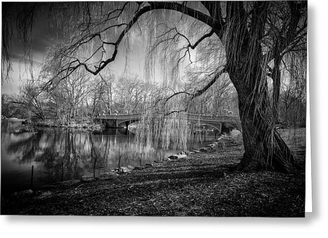 Willow Lake Greeting Cards - Late Winter at Central Parks Bow Bridge Greeting Card by Paul Sommers