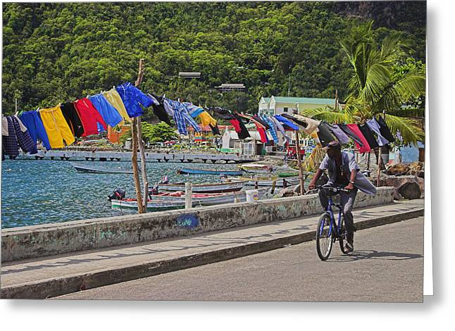 Swimwear Greeting Cards - Laundry Drying- St Lucia. Greeting Card by Chester Williams