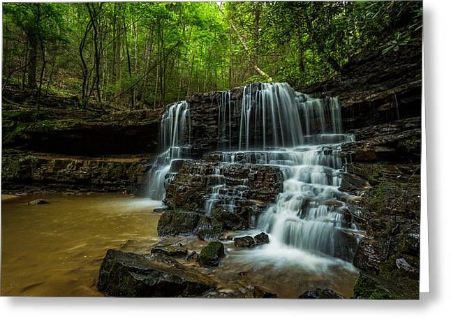 Moss Greeting Cards - Laurel Falls Greeting Card by Brian Anderson