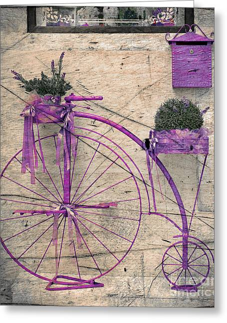 Flower Boxes Drawings Greeting Cards - Lavender bicycle Greeting Card by Svetlana Sewell