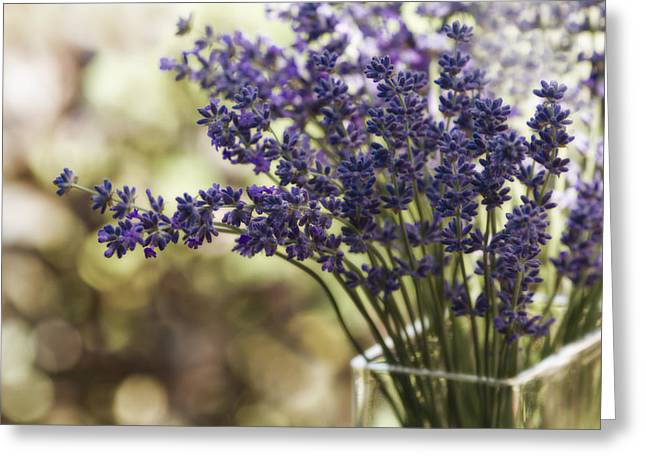 Lavender Greeting Cards - Lavender Bokeh Greeting Card by Rebecca Cozart