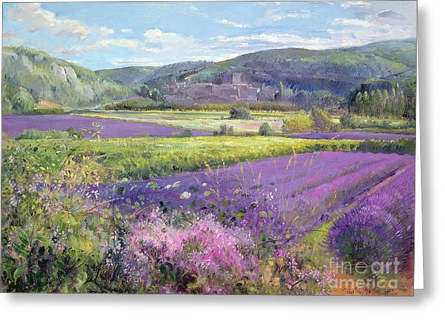 Rural Landscapes Paintings Greeting Cards - Lavender Fields in Old Provence Greeting Card by Timothy Easton