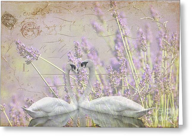 Shower Curtain Greeting Cards - Lavender Swans Zen  Love Greeting Card by ArtyZen Studios