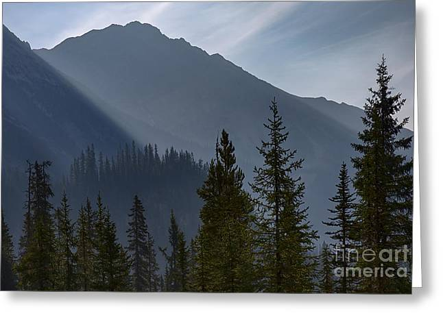 Nature Greeting Cards - Layered Light Greeting Card by Idaho Scenic Images Linda Lantzy