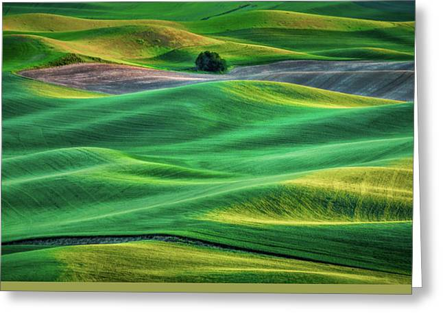 Layers Of Light Greeting Card by Don Schwartz