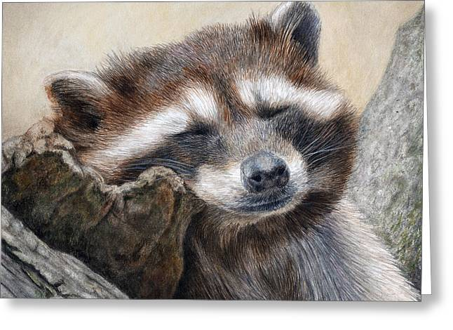 Sleeping Animals Greeting Cards - Lazy Afternoon Greeting Card by Pat Erickson