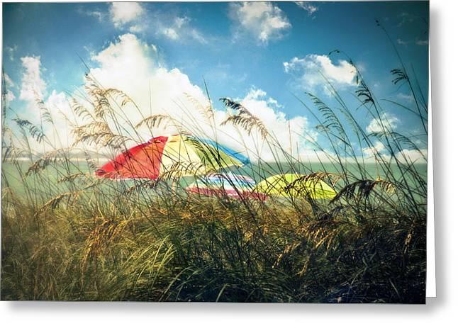 Lazy Days Of Summer Greeting Card by Tammy Wetzel