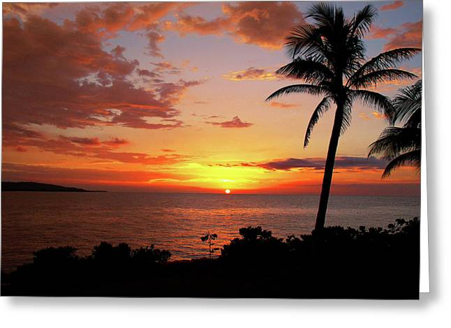 Tropical Beach Greeting Cards - Lazy Sunset Greeting Card by Kamil Swiatek