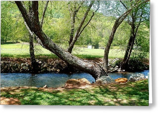Lazy Tree Greeting Card by Glenda Barrett