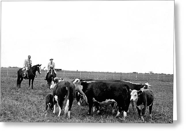 Vice President Photographs Greeting Cards - LBJ & Humphrey On Horseback Greeting Card by Underwood Archives