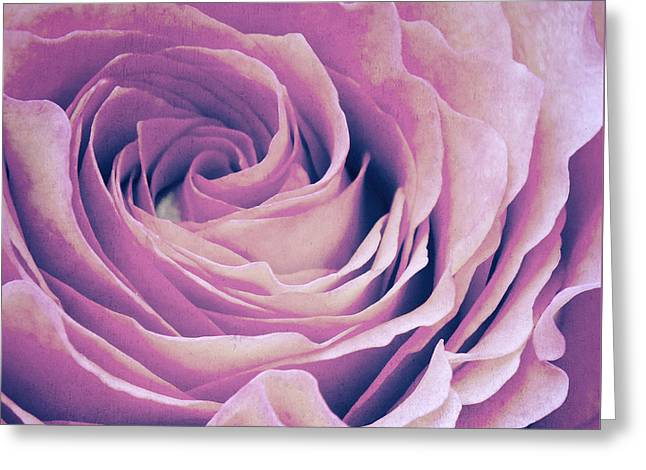 Rose Petals Mixed Media Greeting Cards - Le petale de rose pourpre Greeting Card by Angela Doelling AD DESIGN Photo and PhotoArt