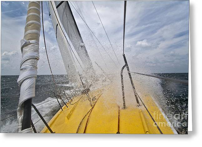 Yellow Sailboats Greeting Cards - Le Pingouin Charging Upwind Greeting Card by Dustin K Ryan