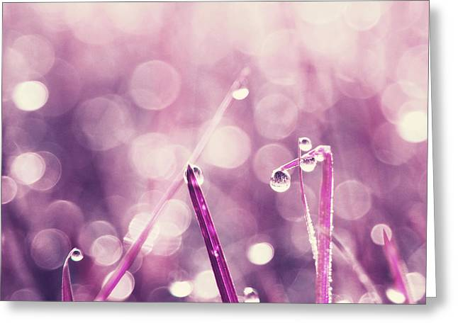 Aimelle Photographs Greeting Cards - Le Reveil - s03c2b Greeting Card by Variance Collections