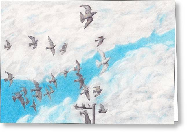 Leader Of The Flock Greeting Card by Stevie the floating artist