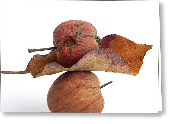 Two Tailed Photographs Greeting Cards - Leaf and apples Greeting Card by Bernard Jaubert