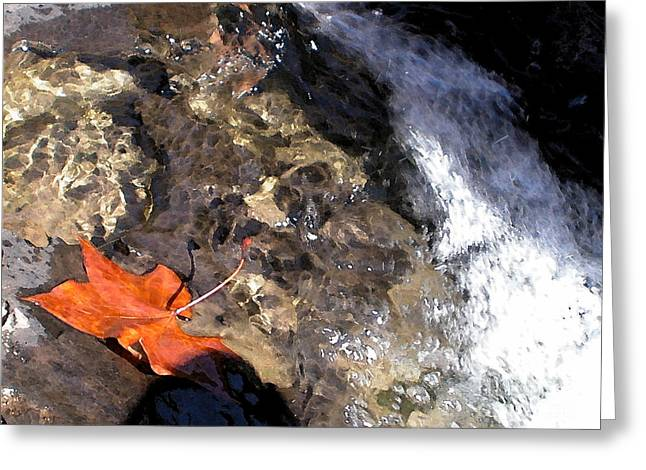Richland Creek Greeting Cards - Leaf At Richland Creek Greeting Card by Steve Grisham