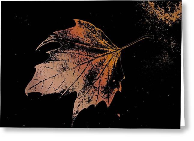 Leaf on Bricks Greeting Card by Tim Allen