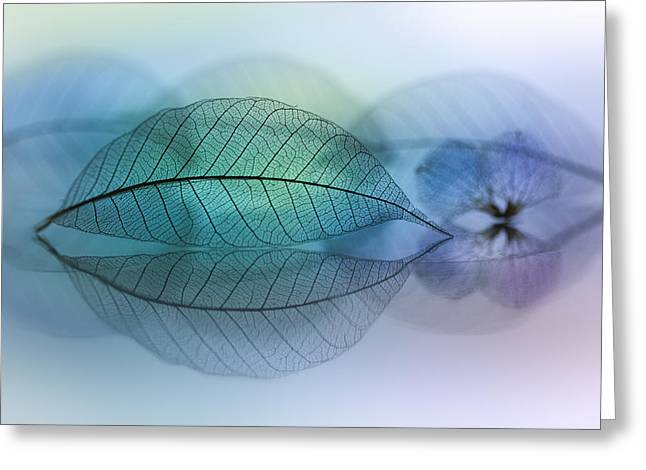 Fineart Greeting Cards - Leaf Greeting Card by Shihya Kowatari