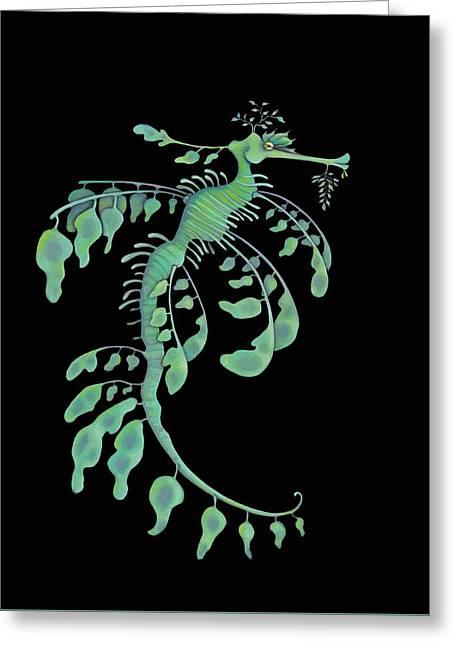 Leafy Sea Dragon Greeting Cards - Leafy on Black Greeting Card by Michelle Lackey