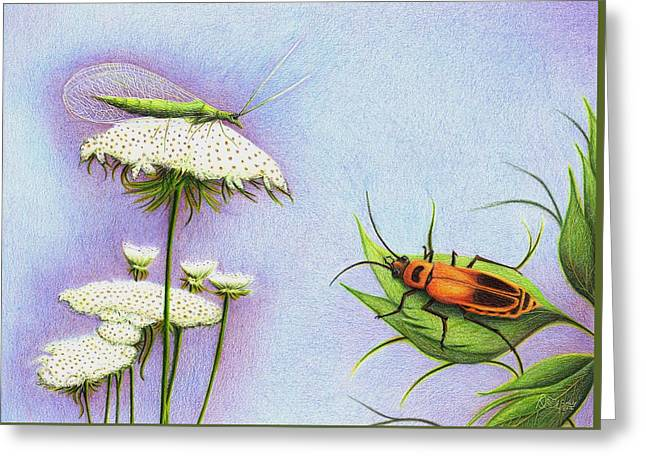 Leather And Lace... For The Gardeners Greeting Card by Danielle R T Haney