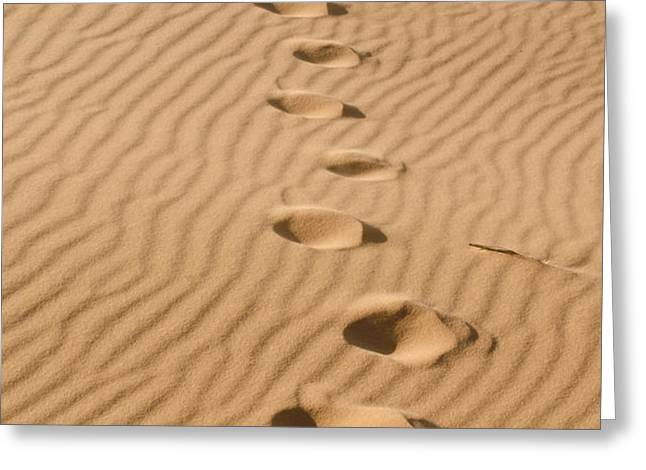 Leave only Footprints Greeting Card by Heather Applegate