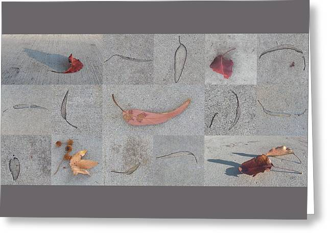 Leaves And Cracks Collage Greeting Card by Ben and Raisa Gertsberg