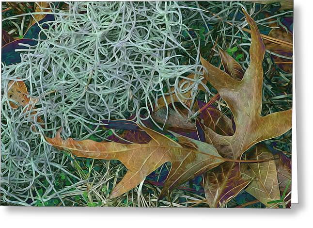 Moss Greeting Cards - Leaves and Tendrils Greeting Card by Lynda Lehmann