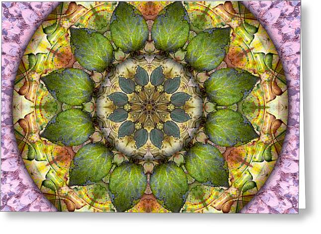 Becky Greeting Cards - Circle of Life Mandala - Leaves of Glass Greeting Card by Becky Titus