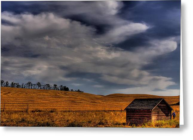Leaving the Shed Greeting Card by David Patterson