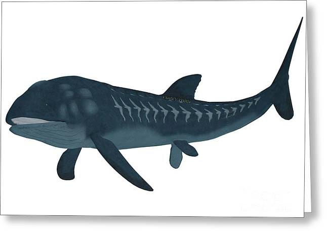 Sea Life Digital Art Greeting Cards - Leedsichthys Fish over White Greeting Card by Corey Ford