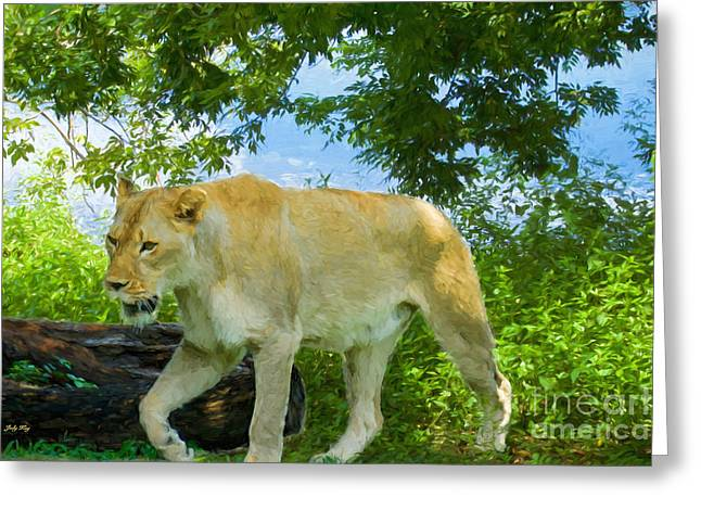 Recently Sold -  - Lions Greeting Cards - Leisurely Stroll Greeting Card by Judy Kay