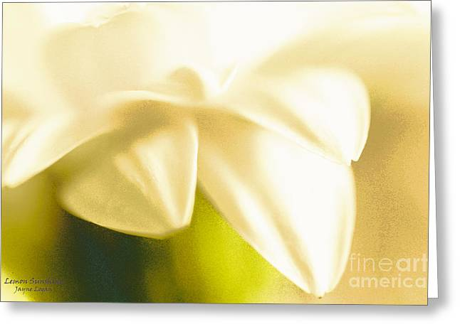 Office Space Digital Greeting Cards - Lemon Sunshine Greeting Card by Jayne Logan Intveld