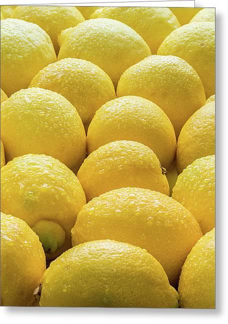 Lemons Lemons Lemons Greeting Card by Steve Gadomski
