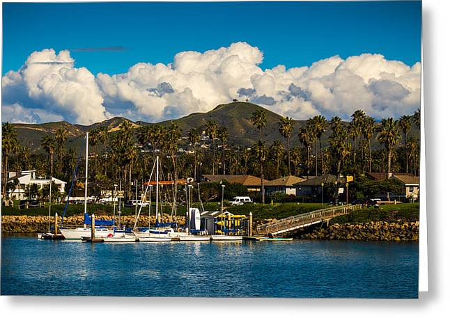Ventura California Greeting Cards - Leo Robbins Sailing Center and Two Trees Greeting Card by Danny Goen