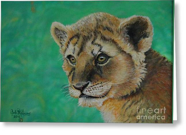 King Of Beast Prints Greeting Cards - Leonidas   the young Lion King Greeting Card by Bob Williams