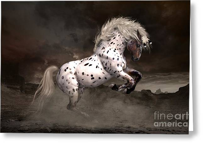 Spotted Horse Greeting Cards - Leopard Appaloosa Shiloh Greeting Card by Shanina Conway
