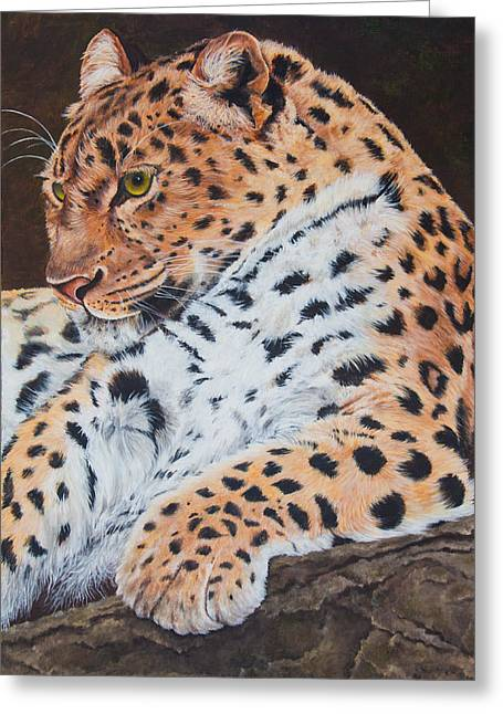 Jaguars Greeting Cards - Leopard Greeting Card by Christine Brunette