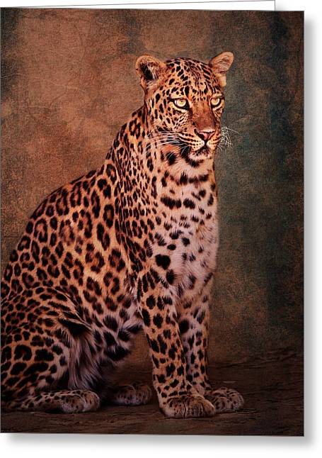 Jaguars Greeting Cards - Leopard Greeting Card by Constance Grippin
