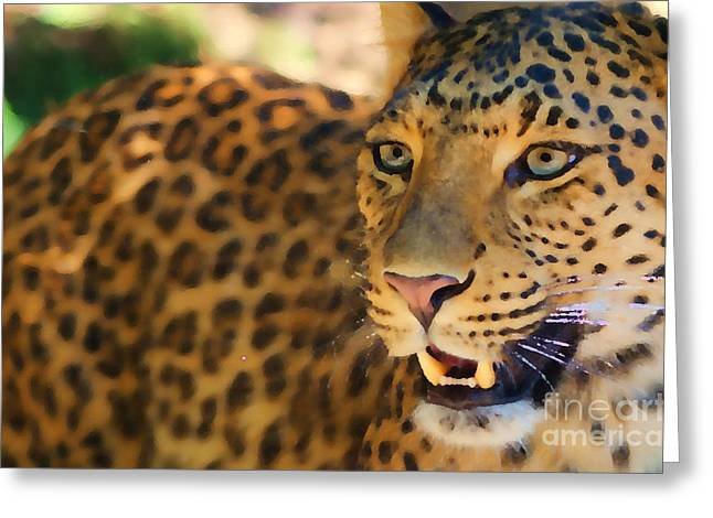 Painted Details Pastels Greeting Cards - Leopard Greeting Card by Louise Fahy